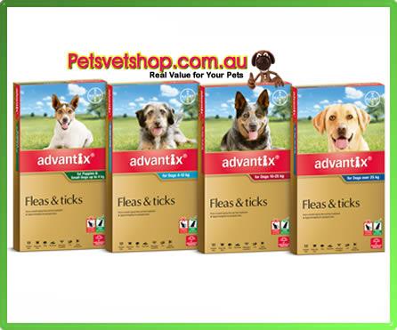 Advantix for Dogs