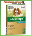 Advantage Aqua Small Dogs 6 Month Pack