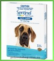 Sentinel Spectrum Chews - Large Dogs 22 - 45 kg   (50-101 lbs) Blue