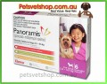 Panoramis flea, worm and heartworm treatment (Trifexis)