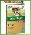 Advantage Red Medium Dogs 6 Month Pack