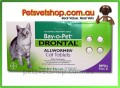 Drontal Allwormer for Cats 4 Pack