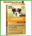 Advocate for Medium Dogs Red 6 Pack