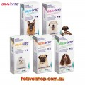 Bravecto for All Size Dogs